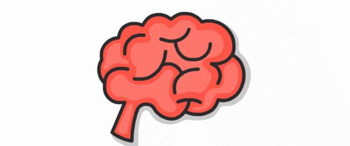 O Cérebro do Adolescente: Isso Explica Tudo!