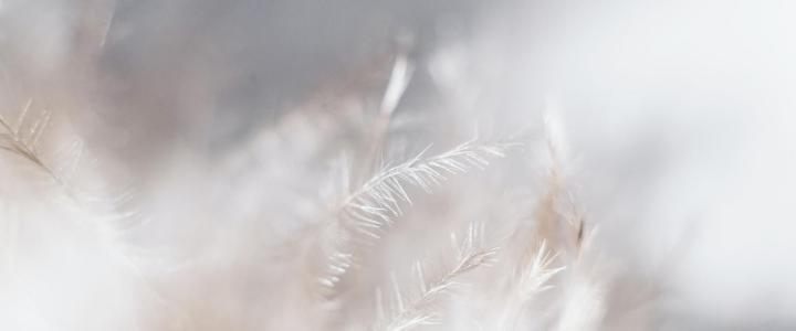 O Que é Evolução Espiritual?